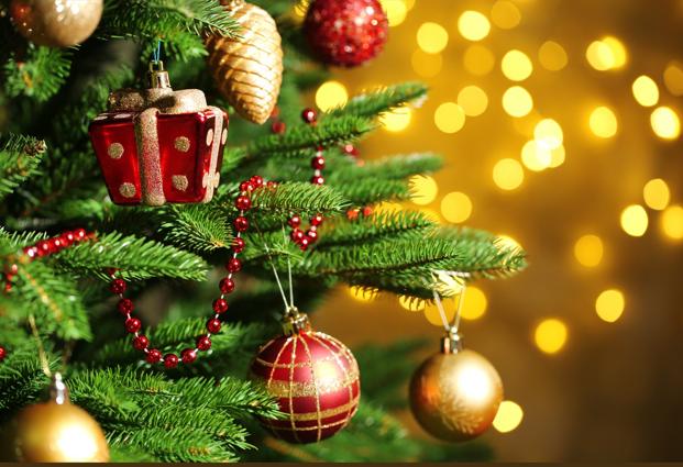 Christmas tree pic.PNG