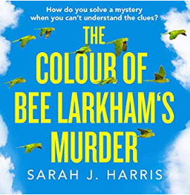The colour of Bee Larkham's murder